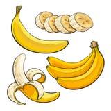 Sliced, peeled, singl and bunch of three ripe banana Royalty Free Stock Photo