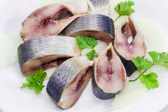 Sliced pickled atlantic herring on a white dish closeup. Sliced pickled atlantic herring, chopped onions and parsley leaves on a white dish closeup Stock Images