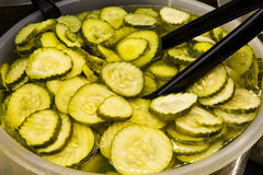 Sliced Pickles Royalty Free Stock Photos