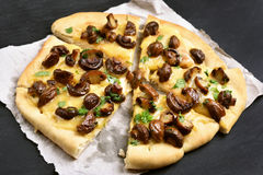 Sliced pizza with mushrooms and cheese Stock Image