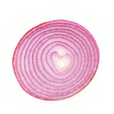 Sliced purple onion Stock Photo