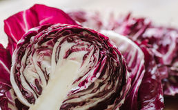 Free Sliced Radicchio In The Sunlight Stock Photography - 44535812
