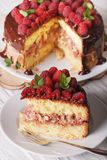 Sliced raspberry sponge cake close up on a white plate. Vertical Royalty Free Stock Photos
