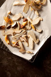 Sliced raw fresh forest mushrooms Stock Photos