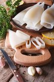Sliced raw squid with ingredients closeup. Vertical Royalty Free Stock Images