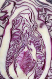 Sliced red cabbage Royalty Free Stock Photography