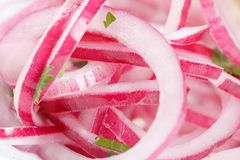 Sliced red onion Royalty Free Stock Photography