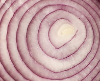 Sliced red onion. On background Stock Photography