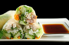Sliced Rice Paper Rolls. Delicious and healthy Vietnamese rice paper rolls with chicken and vegetables Stock Photos
