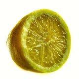 Sliced lemon citrus fruit Stock Photography