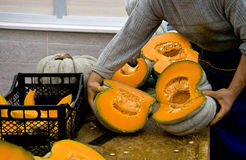 Sliced Of Ripe Pumpkins Royalty Free Stock Image
