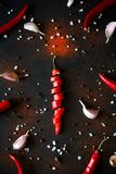 Sliced ripe red chili pepper, garlic, pods, peas and powder lying on dark wooden background. Top view. Flat lay royalty free stock photos