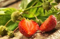 Sliced ripe strawberry Royalty Free Stock Image
