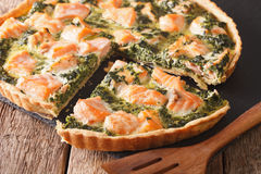 Sliced Savory quiche with salmon and spinach, close-up. Horizont Royalty Free Stock Photos