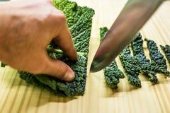 Sliced savoy cabbage Stock Photos