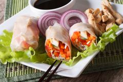 Sliced spring rolls with chicken and vegetables, horizontal Royalty Free Stock Images
