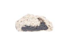 Sliced steamed stuff bun, black sesame salapao isolated on white Stock Image