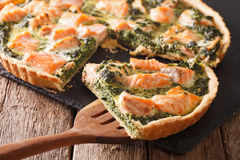 Sliced tart with salmon, spinach and cream close-up. horizontal stock image