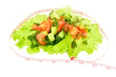 Sliced tomato, cucumber and dill on a piece of lettuce with meter Royalty Free Stock Photo