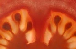 Sliced tomato Royalty Free Stock Photo