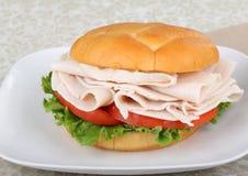 Sliced Turkey Breast Sandwich. Sliced turkey breast, lettuce and tomato sandwich on a plate royalty free stock photo