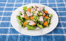 Sliced Turkey on a Fresh Vegetable Salad Stock Images