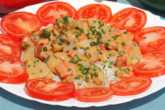 Sliced turkey. With rice and tomatoes on a plate royalty free stock images