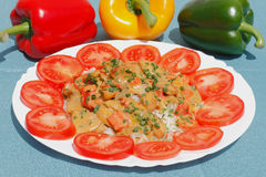 Sliced turkey. With rice and tomatoes on a plate royalty free stock image