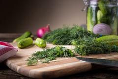 Sliced twig of dill on a wooden board with cucumber and jar Stock Photography