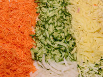 Sliced vegetables. Cheese, onions, cucumber, carrot cutting into strips Royalty Free Stock Photography