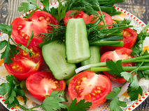 Sliced vegetables on a plate. Sliced tomatoes and cucumbers with greens on a plate Royalty Free Stock Photos