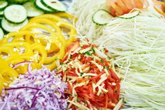 Sliced vegetables for salad. Bell pepper cucumber cabbage onion Royalty Free Stock Images
