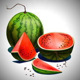Sliced watermelon Royalty Free Stock Image