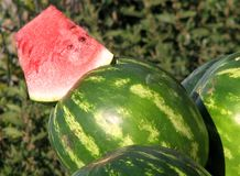 A Sliced Watermelon in a Market Royalty Free Stock Images