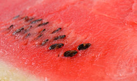 Sliced watermelon texture Royalty Free Stock Images
