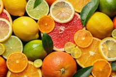 Sliced and whole citrus fruits with leaves as background. Top view stock photography
