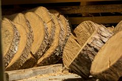 Sliced wooden slices await processing Stock Photos