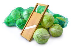 slicer σαλάτας λάχανων Στοκ φωτογραφία με δικαίωμα ελεύθερης χρήσης