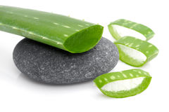 Slices of aloe vera Stock Photography