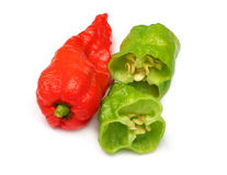 Slices Bhut Jolokia chili pepper Royalty Free Stock Photography