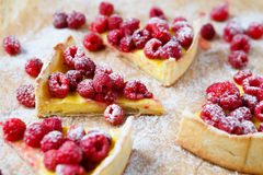 Slices of cake with custard and raspberry Stock Image