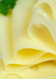 Slices of cheese. With parsley in the background, close-up Royalty Free Stock Images
