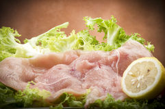 Slices of chicken with salad Royalty Free Stock Photos