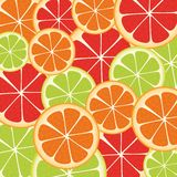 Slices of citrus fruit. Background of many slices of citrus fruit Royalty Free Stock Images