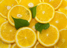Slices of citrus fruit, background Royalty Free Stock Photography