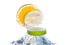Slices of citrus fruit jumping out of the water Stock Photography