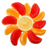 Slices of citrus fruits Royalty Free Stock Image