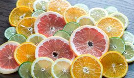 Slices of citrus fruits Stock Images