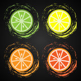 Slices of citrus fruits. Lime, lemon, orange and grapefruit Stock Photo