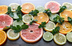 Slices of citrus fruits Royalty Free Stock Photography